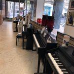 Delmas Musique IMG_8114-150x150 Magasin d'instruments de musique