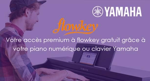 Delmas Musique image002 Votre accès premium flowkey gratuit grâce à votre clavier Yamaha