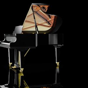 Delmas Musique C189T-300x300 Piano Schimmel SP 182 occasion