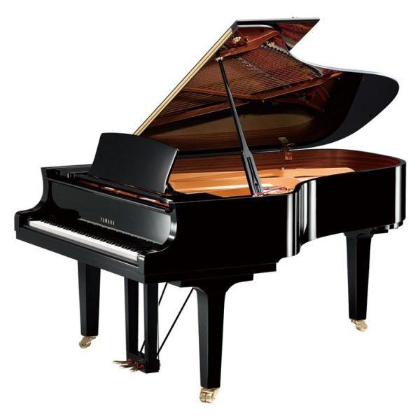 Delmas Musique C6 Yamaha C6X