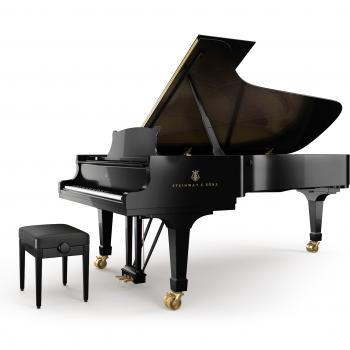 Delmas Musique Fluegel_D_Black_03-1-350x350 Steinway & Sons D-274